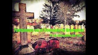 Ardillas y fantasmas en el cementerio / Ghost Area - Area Fantasma