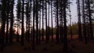 "Indian Creek Reservoir - Part 8 ""Did Bigfoot Bend This Sign"""