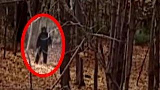 Mysterious Bigfoot Sightings Caught on Tape