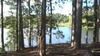 Bigfoot Hunt - Island Discovery