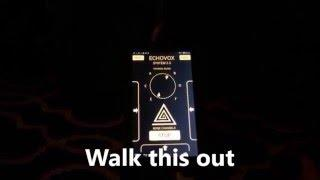 EchoVox 3.0 & The Wright Brothers