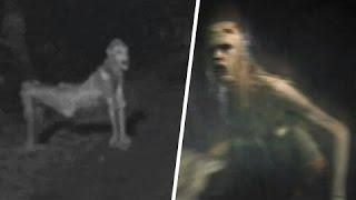 Scary Mysterious Creatures And Ghosts Recorded On Video