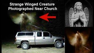 Strange Winged Creature Photographed Near Church?
