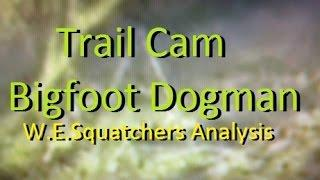 Trail Cam Bigfoot/Dogman & Something Else From Tennessee ~ W.E.Squatchers Analysis