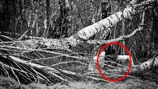10 Creepiest Things Ever Found In The Woods | Real Documentary