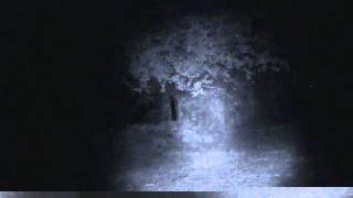 :: Camara Vigilancia :: Cementerio la Mussara :: Parte 2