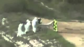 Misterioso video muestra el rescate de un tritón en un lago de Polonia