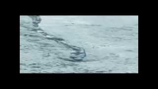 The Iceland Worm Monster (Lagarfljóts Worm) Caught on Tape? (2012)