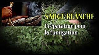 SAUGE BLANCHE préparation pour fumigation et purification