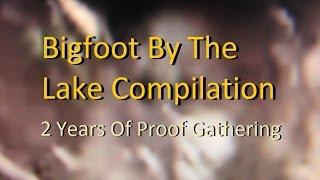 Bigfoot By The Lake Compilation- 2 Years of Proof Gathering