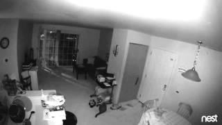 Orb in Grand Rapids Home 9/3/15