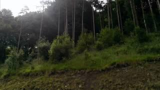 MACCLESFIELD FOREST EVP SPIRIT VOICES WORSLEY PARANORMAL GROUP