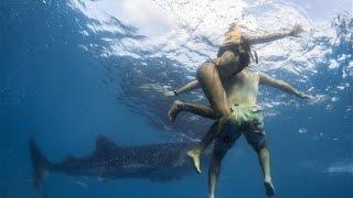 5 Horrific Shark Attacks Caught On Tape #1