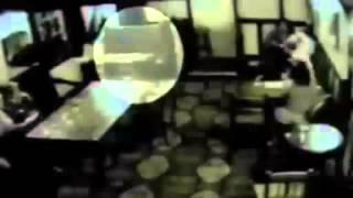 Poltergeist Moves Beer Glass inside Bar