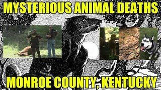 More Animal Mutilation Deaths In Monroe County, Kentucky (Dogman, Mountain Lion, Or What?)