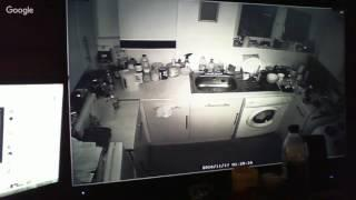 Kitchen Cam Live While i Rest... Eairly Night