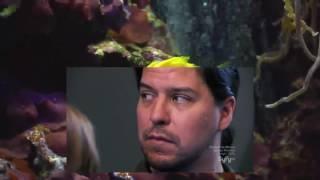 Haunted Collector Season 3 Episode 12