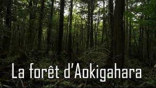 [Documentaire] Les Dossiers Du Paranormal: Aokigahara