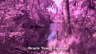 Coco Palms Resort Kauai, Hawaii Investigation Archived footage released in 2016 Bearfort Paranormal