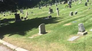 Road Trip Cemetery Clips