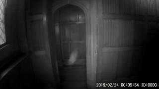 Henry VIII GHOST CAPTURED IN HIS PALACE   THIS WILL AMAZE YOU