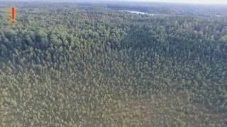Μπορείτε να το δείτε;;;Drone κινηματογράφησε ΑΤΙΑ σε δάσος της Ρωσίας!