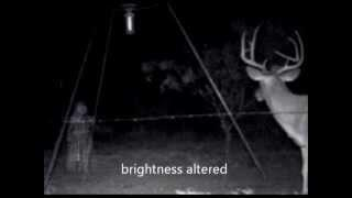 Fantôme d'une petite fille pendant la chasse