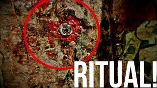 Ritual del Ojo Sangriento - Ritual del Libro de los muertos