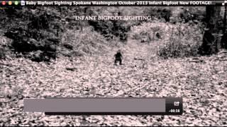 Baby Bigfoot Sighting Spokane Washington Breakdown