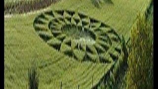 Crop circle ou cercle de culture