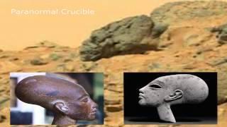 Alien Hybrid Skull Found On Mars