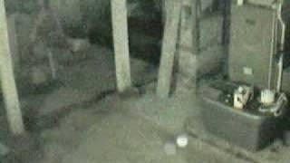 Large orb caught on dddavids Ghost Cams. Paranormal Vlog.