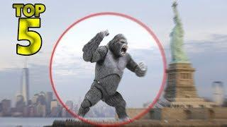 5 MORE ALIVE REAL KING KONG CAUGHT ON CAMERA & SPOTTED IN REAL LIFE!