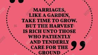 tend to your rose bush and garden  first