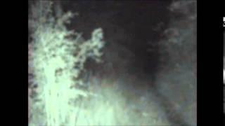 The Lost Files #9 The ghost at Pluckley Woods