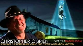 Veritas Radio - Christopher O'Brien - Stalking the Herd: Unraveling the Cattle Mutilation Mystery