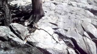 Emerald Bay Part 1 Leap Of Faith At Eagle Falls