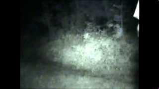 Joydens Wood WOODS, Ghost HUNT VIDEO . 26th July 2013 FULL VIDEO
