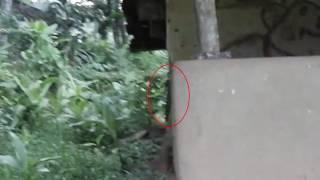 Is that a Ghost ? weird figure caught on camera from an abandoned building - Ghost Hunters