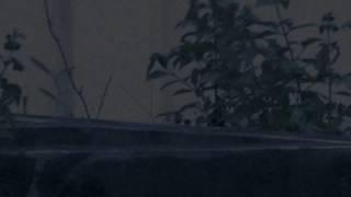 Real Ghost Videos | Ghost in Water Tank | Real Ghost Caught on Camera | Ghost Hunters