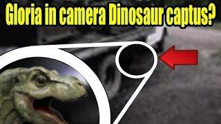 Alive Infante Dinosaur Tyrannosaurus atrapado en la cámara |  Alive Infante Dinosaur Tyrannosaurus