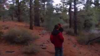 """Indian Creek Reservoir - Part 6 """"Adventuring Into The Toiyabe National Forest"""""""