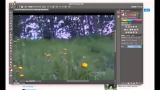 Bigfoot Arise from Grass in Norwegian Meadow Breakdown
