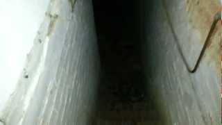 Real Scary Cellar
