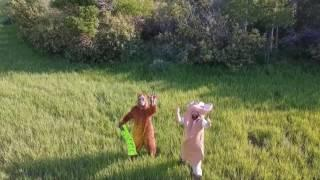 Confirmed Hoax! Possible bigfoot in Idaho!! Flying the drone around and ran across this