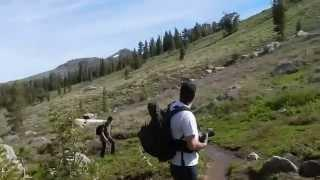 "Elephants Back - Part 5 ""Into The Mokelumne Wilderness"""