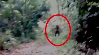 A Huge Black Creature Caught On Tape In Forest!! Ghost Sightings!!