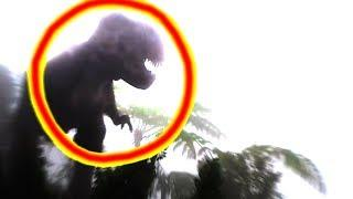 TOP 5 DINOSAURS CAUGHT ON CAMERA & SPOTTED IN REAL LIFE! (Part 3)