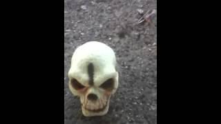 Zombie Halloween Special