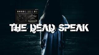 Paranormal Voice | REINCARNATION | THE DEAD SPEAK | Spirit Box Session 11 | Afterlight Box